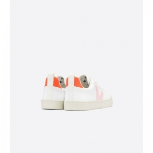 Small V laces cwl  white petale or